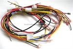Laars R2028001 Wire Harness